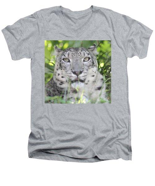 Snow Leopard Men's V-Neck T-Shirt