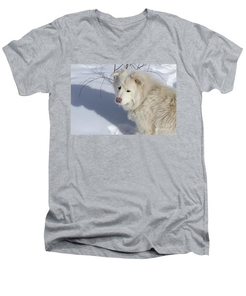 Men's V-Neck T-Shirt featuring the photograph Snowy Nose by Fiona Kennard