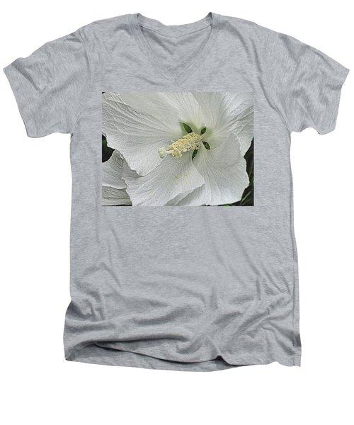 White Hibiscus Men's V-Neck T-Shirt