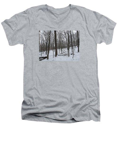 Winter Solitude Men's V-Neck T-Shirt