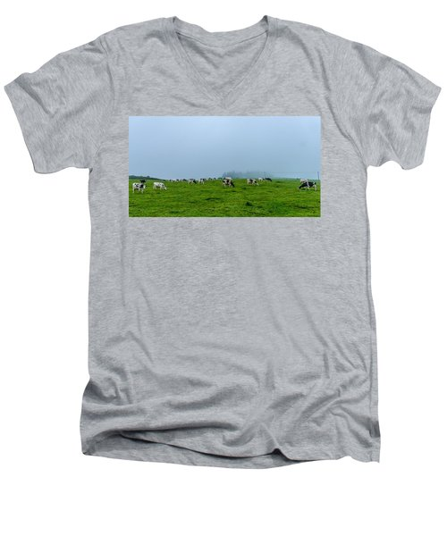 Cows In The Field Men's V-Neck T-Shirt