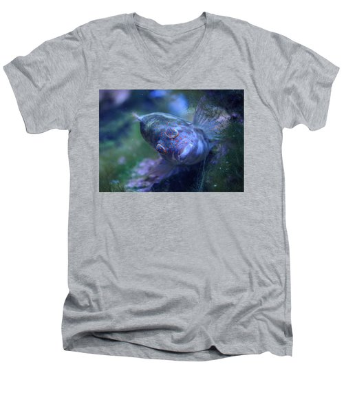 Men's V-Neck T-Shirt featuring the photograph Redspotted Hawkfish  by Savannah Gibbs