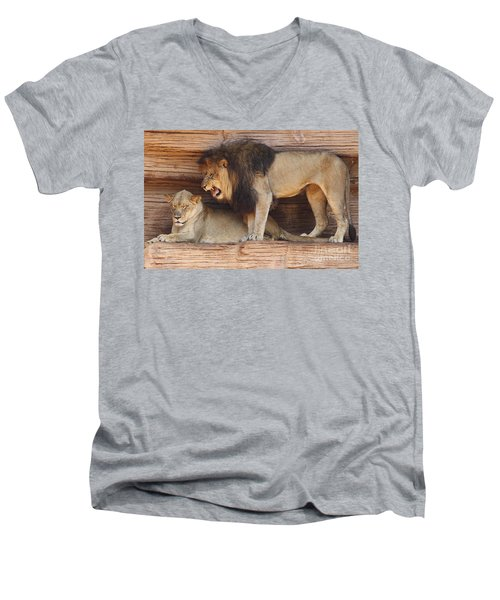 The Feline Honeymooners Men's V-Neck T-Shirt