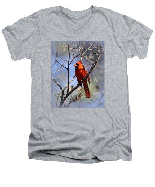 3477-006- Northern Cardinal Men's V-Neck T-Shirt