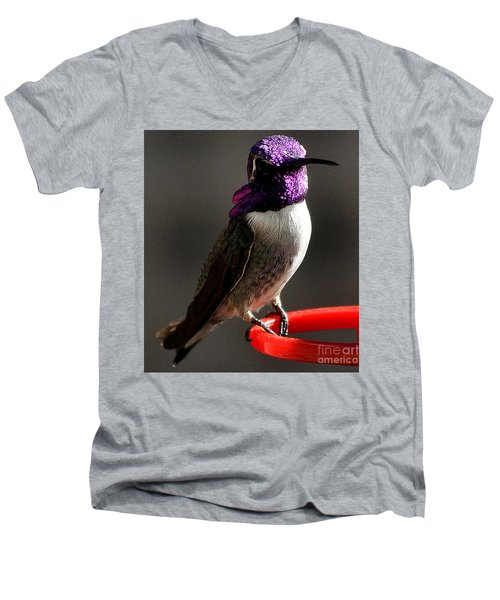 Men's V-Neck T-Shirt featuring the photograph Male Costa's On Perch by Jay Milo