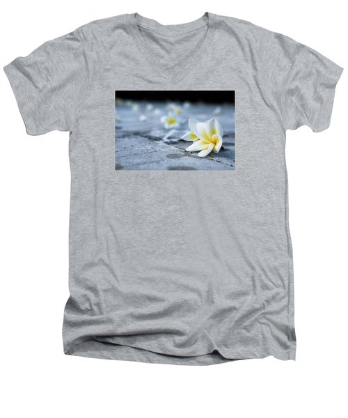 Plumaria Flowers Men's V-Neck T-Shirt