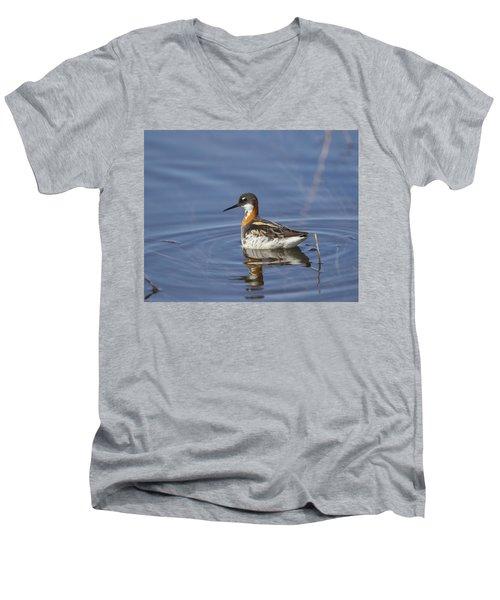Rednecked Phalarope Men's V-Neck T-Shirt