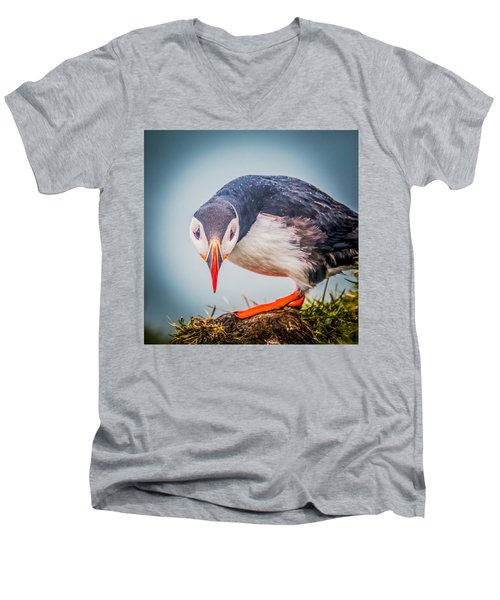 Atlantic Puffin Fratercula Arctica Men's V-Neck T-Shirt by Panoramic Images