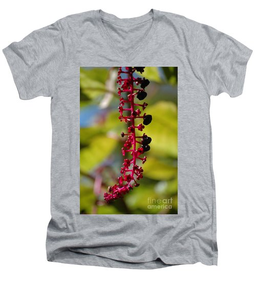 Men's V-Neck T-Shirt featuring the photograph Autumn Light by Christiane Hellner-OBrien