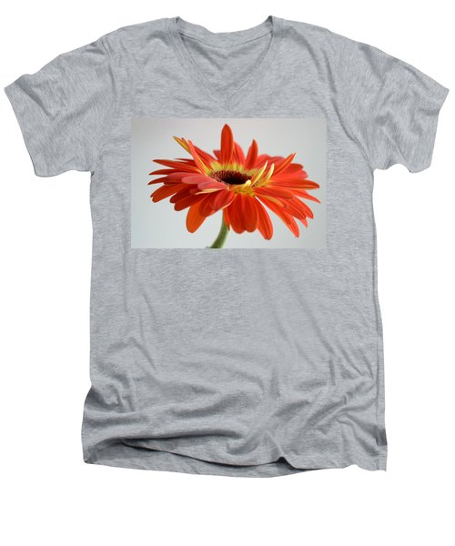 A Beautiful Dream Men's V-Neck T-Shirt