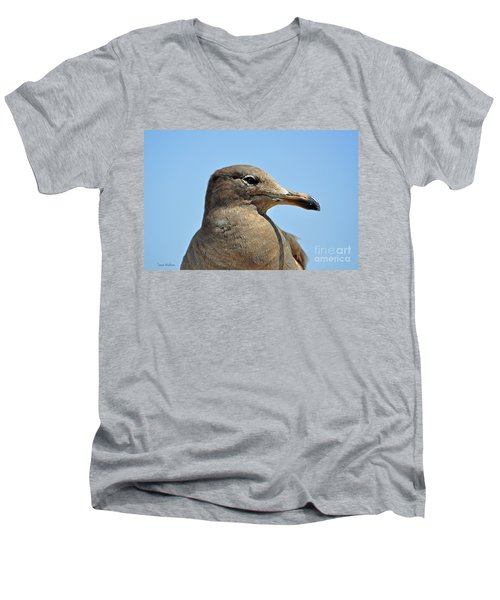 A Brown Gull In Profile Men's V-Neck T-Shirt by Susan Wiedmann