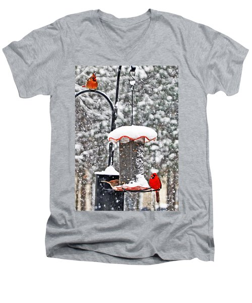 A Cardinal Winter Men's V-Neck T-Shirt by Lydia Holly