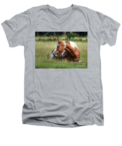 Men's V-Neck T-Shirt featuring the photograph A Comfy Resting Place by Kathy Baccari