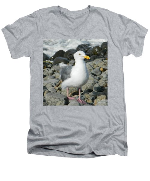Men's V-Neck T-Shirt featuring the photograph A Curious Seagull by Chalet Roome-Rigdon
