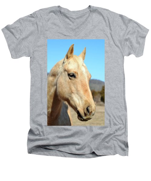 A Gentle Soul Men's V-Neck T-Shirt