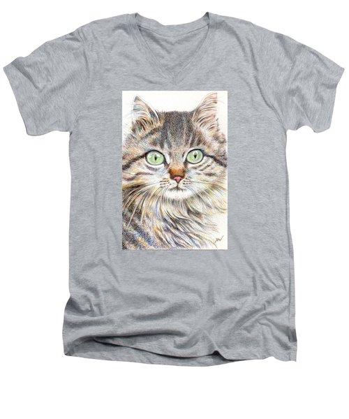 A Handsome Cat  Men's V-Neck T-Shirt