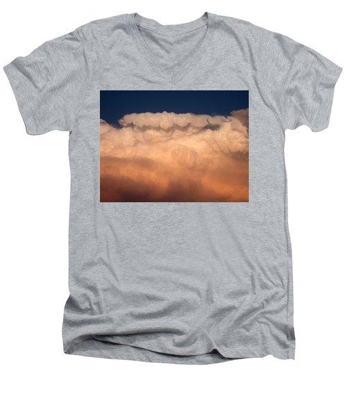 A Lot Of Fluff Men's V-Neck T-Shirt