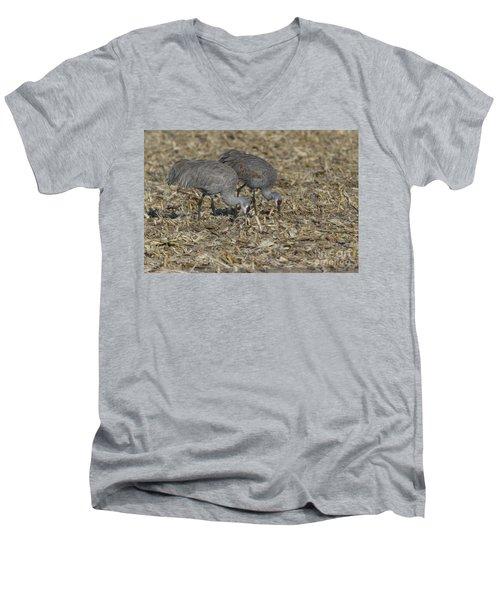 A Pair Of Sandhill Cranes Men's V-Neck T-Shirt