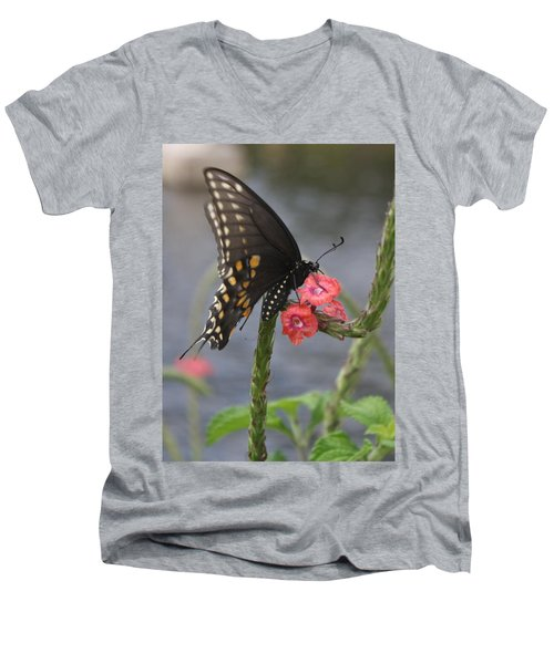 A Pause In Flight Men's V-Neck T-Shirt