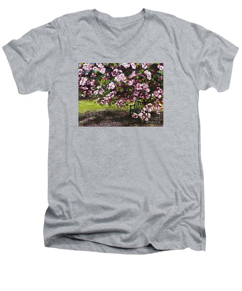 A Place To Dream Men's V-Neck T-Shirt