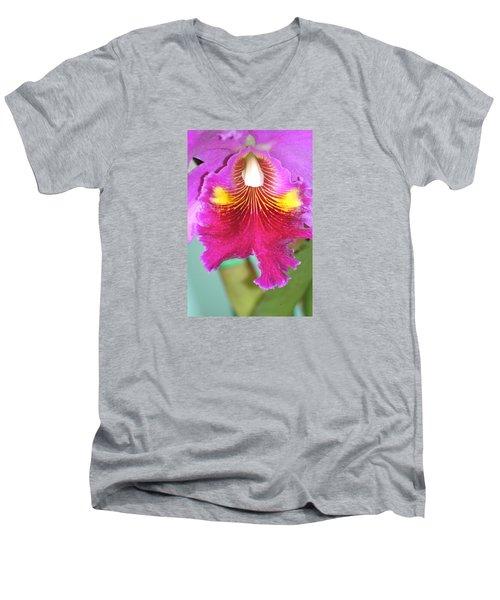 A Purple Cattelaya  Orchid Men's V-Neck T-Shirt