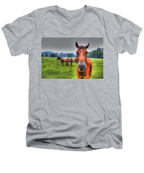 A Starring Horse Men's V-Neck T-Shirt