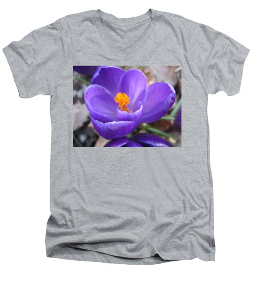 Springjoy Men's V-Neck T-Shirt
