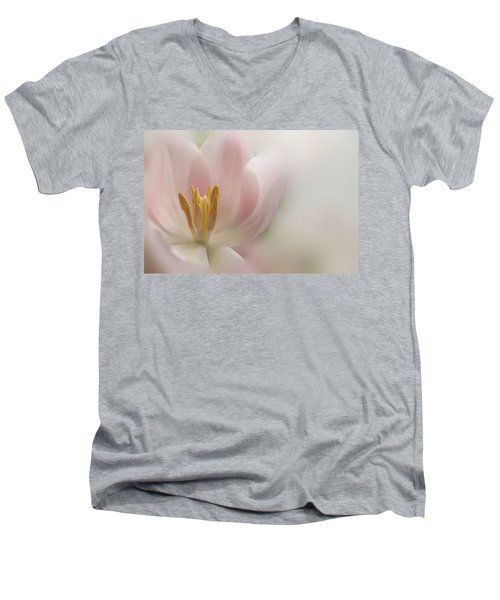A Touch Of Pink Men's V-Neck T-Shirt