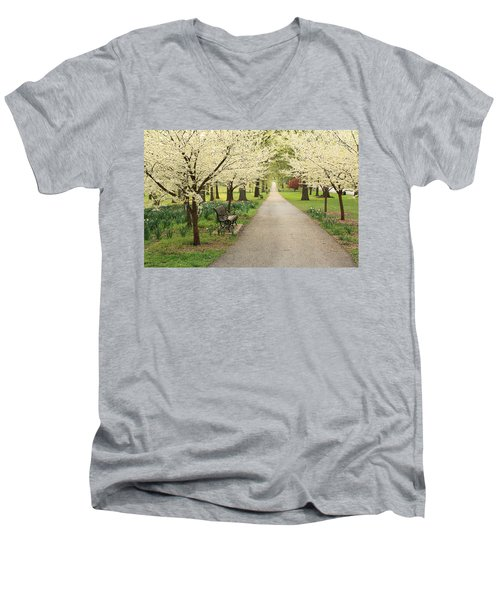A Walk In Tower Grove Men's V-Neck T-Shirt