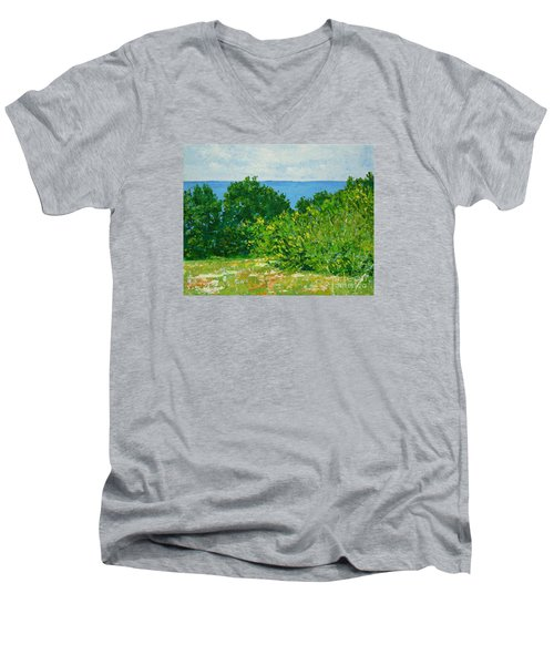 A Winter's Day At The Beach Men's V-Neck T-Shirt