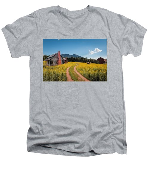 Abandoned Country Life Men's V-Neck T-Shirt