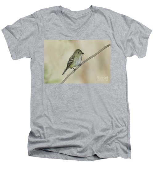 Acadian Flycatcher Men's V-Neck T-Shirt by Anthony Mercieca