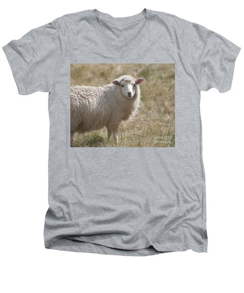 Adorable Sheep Men's V-Neck T-Shirt by Loriannah Hespe
