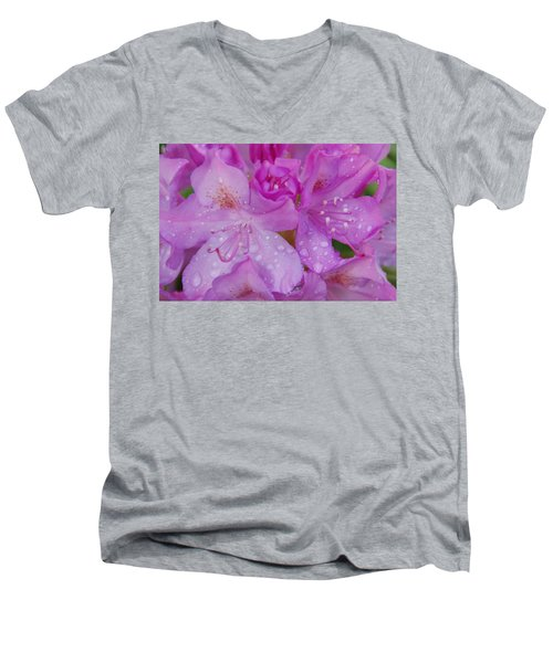 Men's V-Neck T-Shirt featuring the photograph After The Rain by Aimee L Maher Photography and Art Visit ALMGallerydotcom