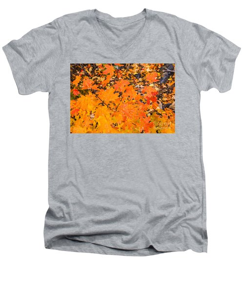After The Rain Men's V-Neck T-Shirt by Sue Smith