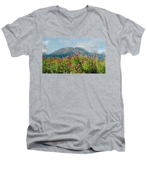 Alaska Flowers In September Men's V-Neck T-Shirt by Denyse Duhaime