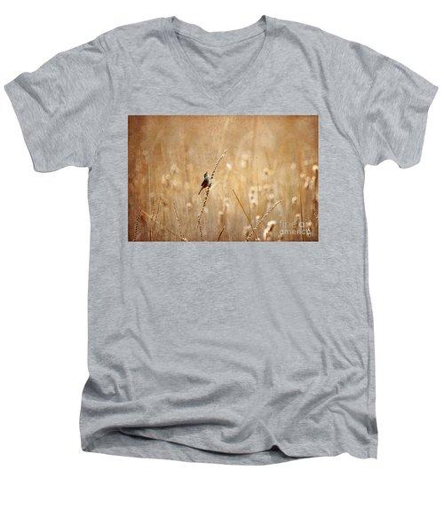 All Rejoicing Men's V-Neck T-Shirt