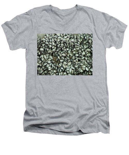 All The Shells Men's V-Neck T-Shirt