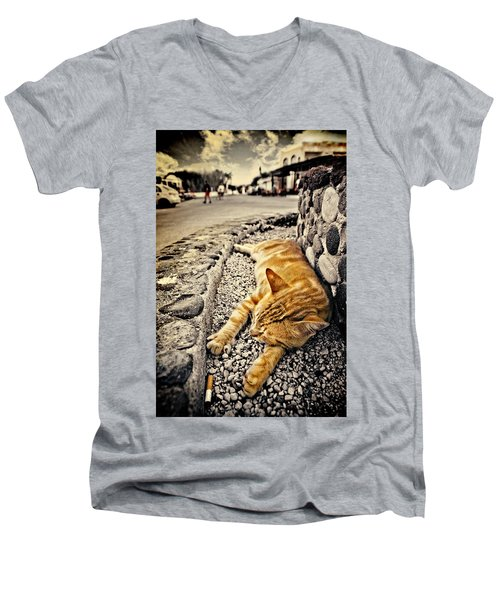 Alley Cat Siesta In Grunge Men's V-Neck T-Shirt by Meirion Matthias