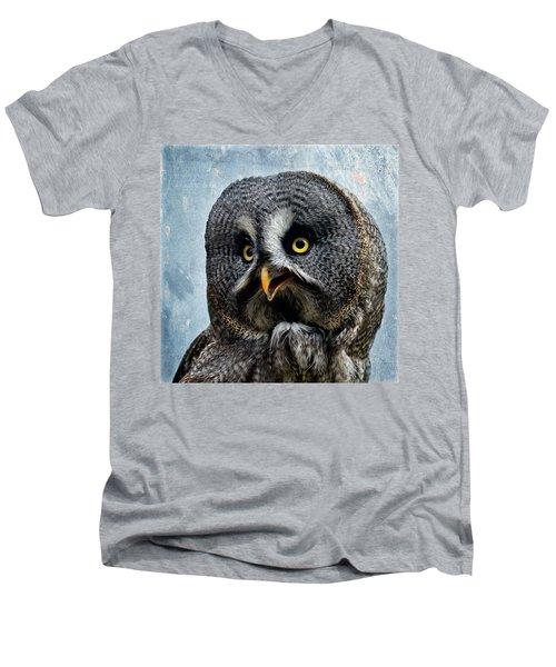 Allocco Della Lapponia - Tawny Owl Of Lapland Men's V-Neck T-Shirt