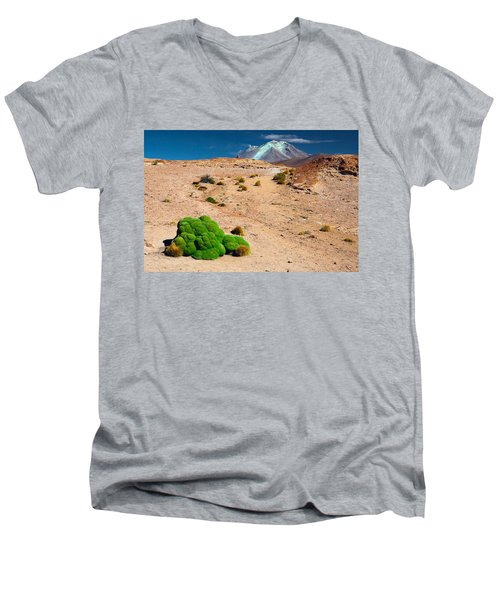 Altiplano Landscape Men's V-Neck T-Shirt by Dirk Ercken
