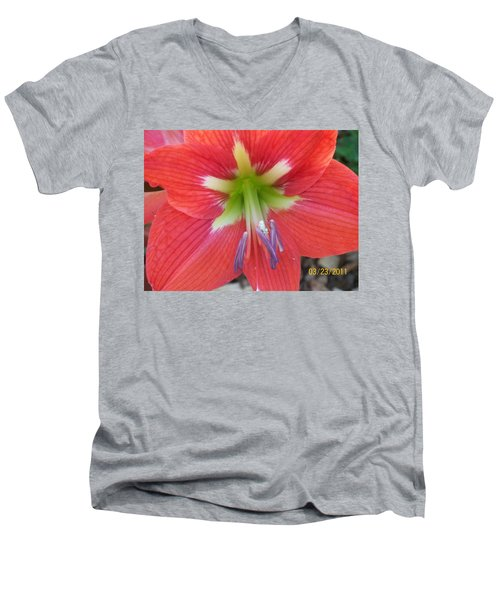Men's V-Neck T-Shirt featuring the photograph Amarylis by Belinda Lee