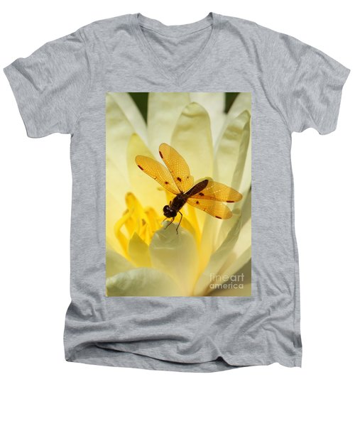 Amber Dragonfly Dancer Men's V-Neck T-Shirt