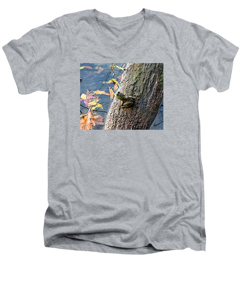 American Bullfrog Men's V-Neck T-Shirt by William Tanneberger
