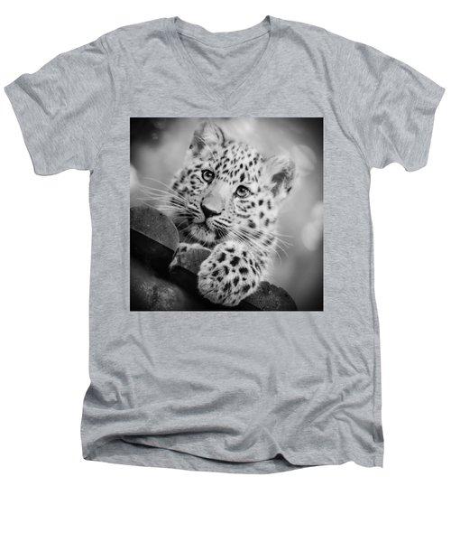 Amur Leopard Cub Portrait Men's V-Neck T-Shirt