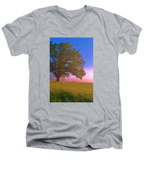 An All-american Sunrise Men's V-Neck T-Shirt