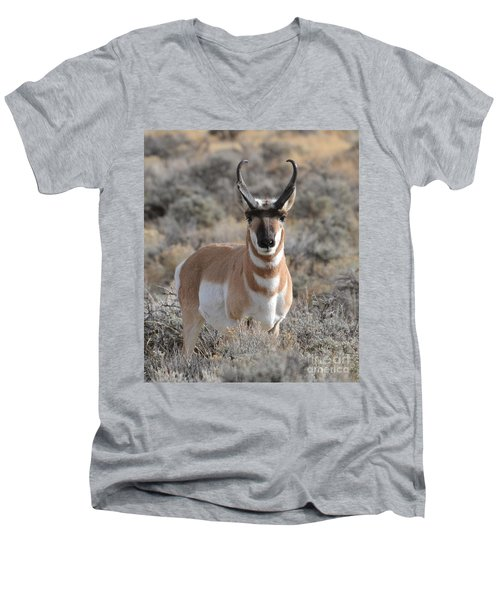 ...and The Antelope Play Men's V-Neck T-Shirt