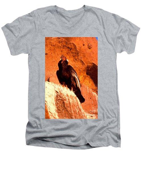 Andean Condor Men's V-Neck T-Shirt