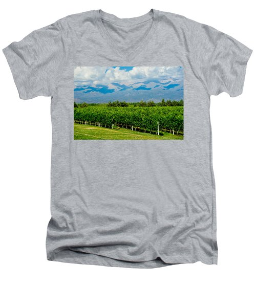 Andes Vineyard Men's V-Neck T-Shirt