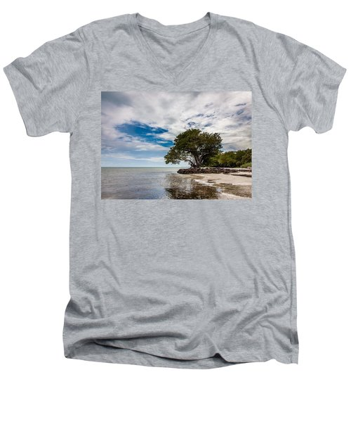 Anne's Beach-3184 Men's V-Neck T-Shirt